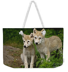 Arctic Wolf Puppies Weekender Tote Bag