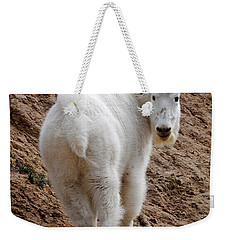 Weekender Tote Bag featuring the photograph Are You Following Me by Vivian Christopher