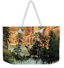 Arizona's Betatkin Aspens Weekender Tote Bag