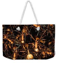 Army Ant Bivouac Site Weekender Tote Bag