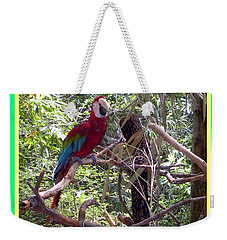 Weekender Tote Bag featuring the photograph Artistic Wild Hawaiian Parrot by Joseph Baril
