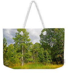 Weekender Tote Bag featuring the photograph Aspen And Others by Jim Thompson