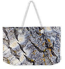 Aspen Bark Weekender Tote Bag by Dee Cresswell