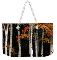 Aspen Contrast Weekender Tote Bag