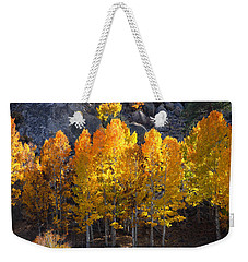 Weekender Tote Bag featuring the photograph Aspen Gold by Lynn Bauer