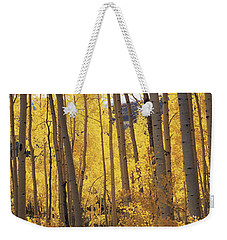 Aspen Trees In Autumn, Colorado, Usa Weekender Tote Bag