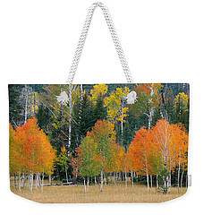 Aspens And Meadow-pan Weekender Tote Bag