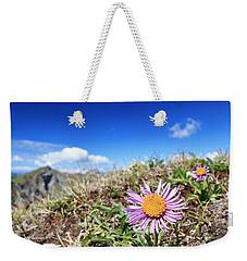 Aster Alpinus Weekender Tote Bag