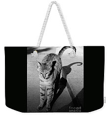 Aswan Cat Weekender Tote Bag