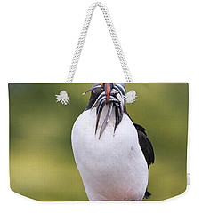 Atlantic Puffin Carrying Greater Sand Weekender Tote Bag by Franka Slothouber
