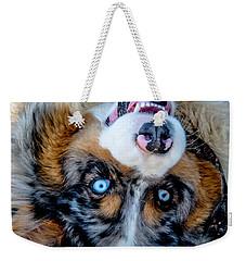Australian Shepherd Weekender Tote Bag by Cheryl Baxter