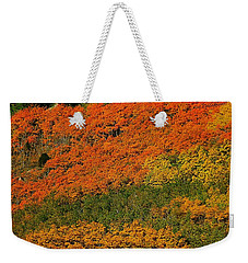 Autumn Color At The Continental Divide 2 Weekender Tote Bag