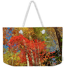 Autumn Colors Weekender Tote Bag by Patrick Shupert