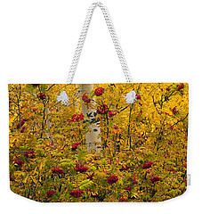 Autumn Forest Colors Weekender Tote Bag by Leland D Howard