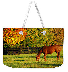 Weekender Tote Bag featuring the photograph Autumn Grazing by James Kirkikis