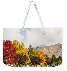 Autumn In The City Weekender Tote Bag by Sue Smith