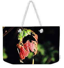 Weekender Tote Bag featuring the photograph Autumn Leaf by Cathy Mahnke