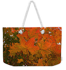 Weekender Tote Bag featuring the photograph Autumn Leaves by Kathy Bassett