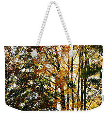 Autumn Light Weekender Tote Bag by Barbara Bardzik