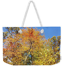 Weekender Tote Bag featuring the photograph Autumn Limbs by Jason Williamson