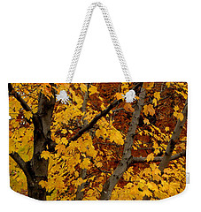 Autumn Moods 21 Weekender Tote Bag by Rodney Lee Williams