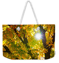 Autumn Morn Weekender Tote Bag by Dee Dee  Whittle