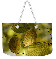 Autumn Mosaic Weekender Tote Bag by Penny Meyers