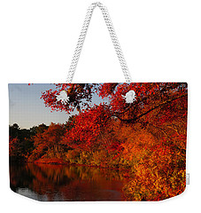 Weekender Tote Bag featuring the photograph Autumn Splendor  by Dianne Cowen