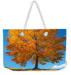 Autumn Tree - 1 Weekender Tote Bag