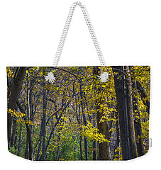 Weekender Tote Bag featuring the photograph Autumn Trees Alley by Sebastian Musial