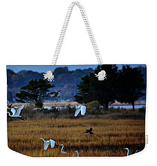 Aviary Convention Weekender Tote Bag by Robert McCubbin