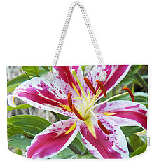 Weekender Tote Bag featuring the photograph Awakening Asiatic Lily by Steven Huszar