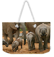 Baby African Elephants Weekender Tote Bag