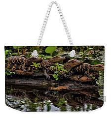 Baby Alligators Reflection Weekender Tote Bag by Dan Sproul