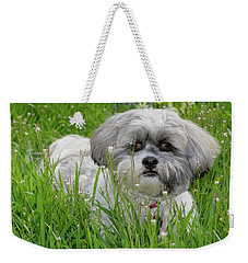 Weekender Tote Bag featuring the photograph Baby Breath by Arthur Fix