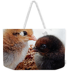 Baby Chicks Weekender Tote Bag by Pamela Walton