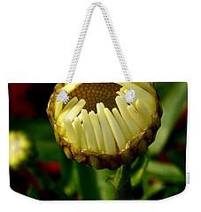 Baby Daisy Weekender Tote Bag