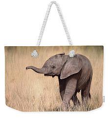Elephant Calf Painting Weekender Tote Bag