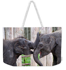 Baby Elephants - Bowie And Belle Weekender Tote Bag