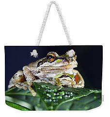 Baby Frog And Mama Frog Weekender Tote Bag