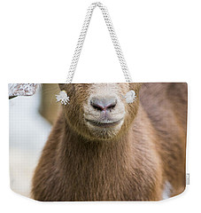 Baby Goat Weekender Tote Bag by Shelby  Young