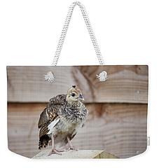 Baby Peacock Weekender Tote Bag