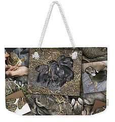 Baby Rabbits Weekender Tote Bag by James Larkin