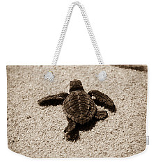 Weekender Tote Bag featuring the photograph Baby Sea Turtle by Sebastian Musial