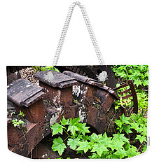 Weekender Tote Bag featuring the photograph Back To The Forest by Cathy Mahnke