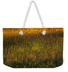 Weekender Tote Bag featuring the photograph Backlit Meadow Grasses by Marty Saccone
