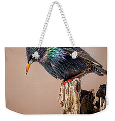 Backyard Birds European Starling Weekender Tote Bag