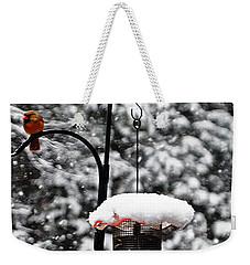 Backyard Winter Wonderland 2  Weekender Tote Bag by Lydia Holly