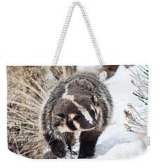 Badger In The Snow Weekender Tote Bag