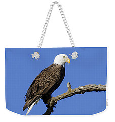 Bald Eagle 4 Weekender Tote Bag